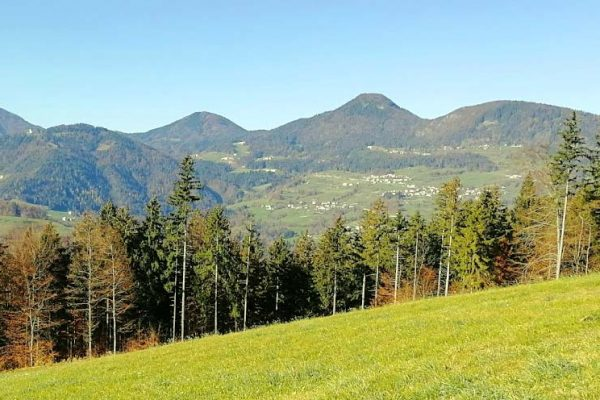 Protective forest assessment toolbox
